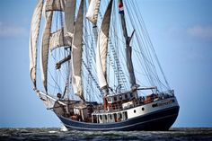 View pictures & full details of THALASSA, a Commercial Boat built in 1980 by BARQUENTINE three mast barquentine and available for sale. Boats For Sale, Tall Ships, Boat Building, Sailing Ships, Netherlands, Vehicles, Crafts, Paintings, Dish