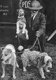 Superintendent William Barnett of the People's Dispensary for Sick Animals (a veterinary charity which helped provide care for sick and injured animals of the poor) with two bandaged dogs and...