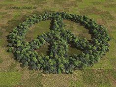Sinn des Lebens    repinned by www.earthangel-family.de