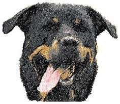 Advanced Embroidery Designs - Rottweiler