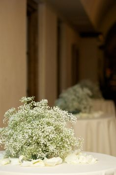 baby's breath ball for round table