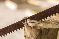 Nuovo articolo del #blog #AgriHobby: parliamo della #sega e degli #strumenti per il #taglio