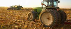 Contributo lavorativo presso l'azienda di famiglia (Bianchi farmer srl) all'età di 15 anni.