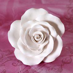 Garden Roses - White   CaljavaOnline