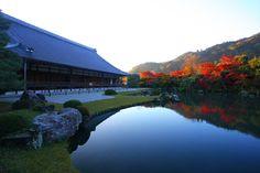 Tenryu-Ji, Kyoto, Japan  天龍寺 : 京都写真(Kyoto Photo)