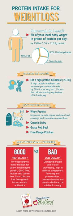 The correct daily protein intake for weight loss #infographic LBV