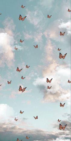 Butterfly Aesthetic Wallpaper