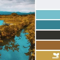 Love the turquoise... Today's inspiration image for { color terrain } is by @inkandshutter ... thank you the the very cool + inspiring #SeedsColor photo share, Louis!