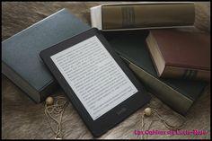 Liseuse numérique (c) Les Cahiers de Lucie-Rose