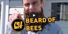 Beard of Bees...would you dare?? Our part-time Beekeeping lecturer at Rutgers OCPE #NJBeekeeping #bee #bees #beekeeper #beekeeping #NJ #Rutgers