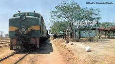Triangle Station. Diesel Loco. Cover of Rhodesia Railways magazine, Sep 1973