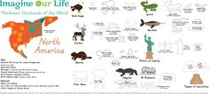 Animals of North America for the Montessori Wall Map