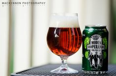 Ska Brewing Co. - Modus Hoperandi    ---  Such a thing does exist! :p