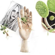 Pilea baby's #green #plants #interior