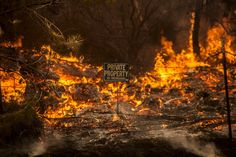 Rocky Fire Burns in California: Pictures