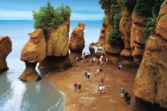 Bay of Fundy - between the Canadian provinces of New Brunswick and Nova Scotia Walking ocean floor at low tide.