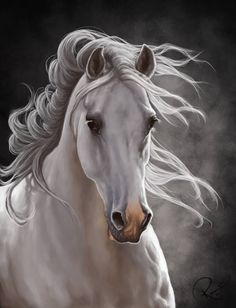 white horse-I want this as a tattoo with lilacs and a little something else with color.