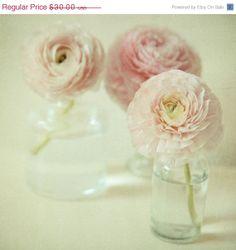 Spring .Dreamy pastel pink flower photography . modern home decor . simple zen art . cottage chic home decor . nursery art . Reverie