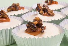 Mini Caramel Cheesecake with Crickets