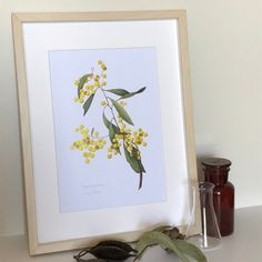 I'm a Canberra based artist specialising in watercolours of botanical and insect subjects. I paint many Australian native plants on paper and vellum. Print, Animal Art, Botanical Art, Floral Sleeve, Painting, Art, Original Watercolor Painting, Original Watercolors, Botanical Watercolor