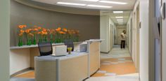 Arlington Free Clinic | Perkins+Will - a pop of color with flowers