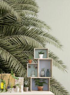Leaf Love. Tapete | Fototapete | Moderne ...