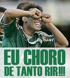 ef1cfad5c8ea6 16 Best Palmeiras images