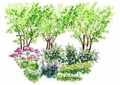 Istutussuunnitelma: rehevät luonnonkasvit puolivarjoon | Meillä kotona