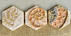 Fossil Ammonite Shell and Leaf Cookies