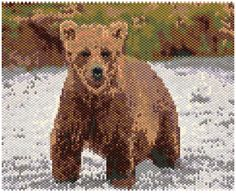 Brown Bear 22614 with Starter Graph