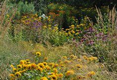 Staudengarten Gross Potrems Gartenrundgang im August