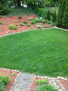 I've never seen our lawn this green.