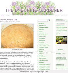 Gardening Blogs, Liquid Gold, Ginger Beer, Fruit, Plants, Food, Flora, Plant, Meals