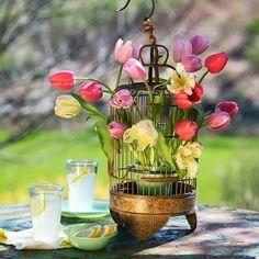 10 Frühlingsdeko Ideen - Frühlingsblumen auf dem Tisch arrangieren
