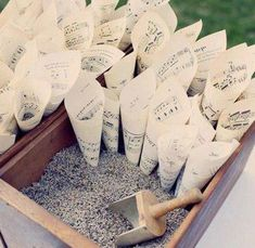 Wedding Exit   Dried Lavender, 9 Blends, Biodegradable   100 - 150 Gue – The Tiny House Farm