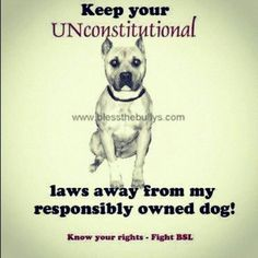 MISMANAGEMENT ALLOWED BSL doesn't address owner actions that create dangerous…