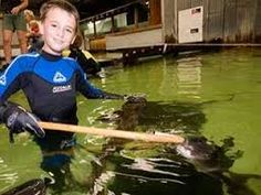 Come to us as a #family for dun activities in #Melbourne! We have a bunch of things that you can do and have a great time together! Come meet #sharks, have #dinner with them and now we also have night time shark #fun just for you!