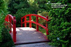 ogrodowe tu i tam: ogród japoński - Hortulus Dobrzyca 2016