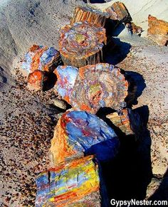 Bucket list item: Visit the Petrified Forest National Park in Arizona – beautiful! See more: www.c… Bucket list item: Visit the Petrified Forest National Park in Arizona – beautiful! See more: www. Formations Rocheuses, Petrified Forest National Park, The Petrified Forest, National Forest, Page Arizona, Arizona Travel, Arizona Trip, Arizona Usa, Visit Arizona