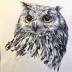 WANT A SHOUTOUT ?   CLICK LINK IN MY PROFILE !!!    Tag  #DRKYSELA   Repost from @hakangursudr   Mixed media owl with copics pens and pencils. I really would love to have an owl someday. This one is for the 50K my thanks go out to each of you for continued interest in my work. Hope to inspire you in the coming year as well. #50K #thanks #thankyou #sketch #sketching #artsy #owl #animalsketch #drawing #illustration #art #artist #markers #copic #copicart #pen #ink #mixedmedia #instaart…