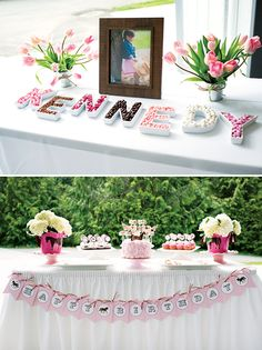 Darling Pink & Brown Pony Party