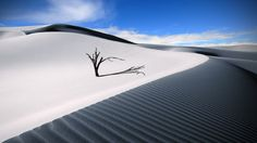 free desktop pictures desert, 2560x1440 (594 kB)