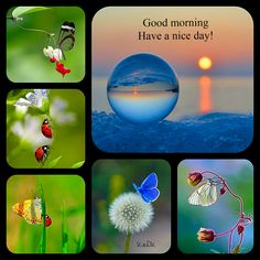 Good morning - Collage made by KaDK's World