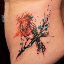 result for robin tattoo Robin Bird Tattoos, Robin Tattoo, Little Bird Tattoos, Bird Tattoo Back, Dragonfly Tattoo, Sarah Tattoo, Arm Tattoos, Flower Tattoos, Sleeve Tattoos
