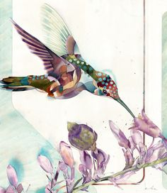 chirp339 bzfdwatercolor on paper 29.5 x 25″travis bruce black