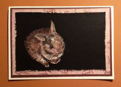 Bunny - Scrap paper, colored pencil - by Beverly Ewart