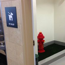 Dog-Friendly Skies: San Diego Airport Opens a Dog Restroom