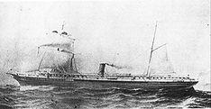 """El Transporte Amazonas fue un buque construido por John Reid & Co., Glasgow, Reino Unido. Su casco era de hierro. Máquina de doble expansión construida por Robert Napier (Nº 331). Tenía dos cubiertas y una de paseo. Formó parte de los buques ordenados construir por la CSAV, que primitivamente eran """"Rímac"""", """"Itata"""" y """"Loa"""" y luego """"Lontué"""" y """"Amazonas""""."""