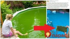 How to Clean Your Pool Quick and Cheap Laundry Hacks, Water Garden, Garden Ponds, Jaba, Garden Inspiration, Interior Design Living Room, Chemistry, Cleaning Hacks, Techno
