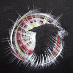 Raven Spirit by CJ Shelton